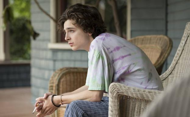 Timothée Chalamet, un adicto en 'Beautiful Boy'./