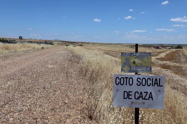 Camino rural que pasa por el término municipal de Mérida. :: hoy/