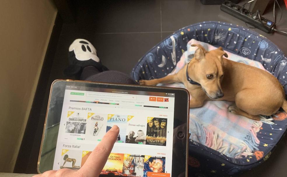 Una usuaria de eFilm consulta desde su casa la sección de películas de la plataforma. /J. M. Romero