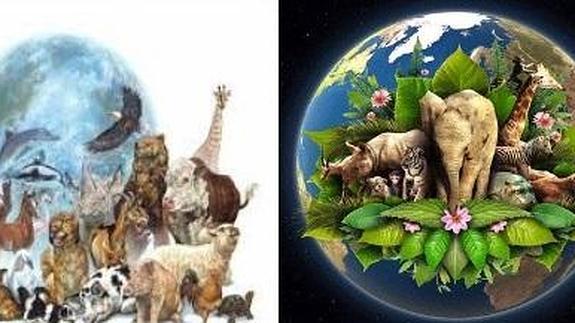 Madre Tierra, un planeta para toda la vida | Hoy